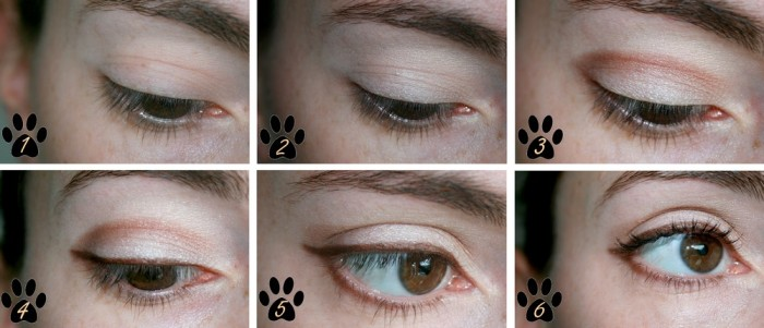 tuto_cat_eyes_palette_too_faced_day_makeup