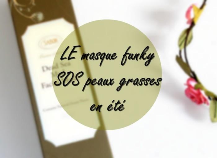 avis_masque_sels_de_la_mer_morte_sabon_4
