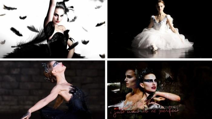 black_swan_6