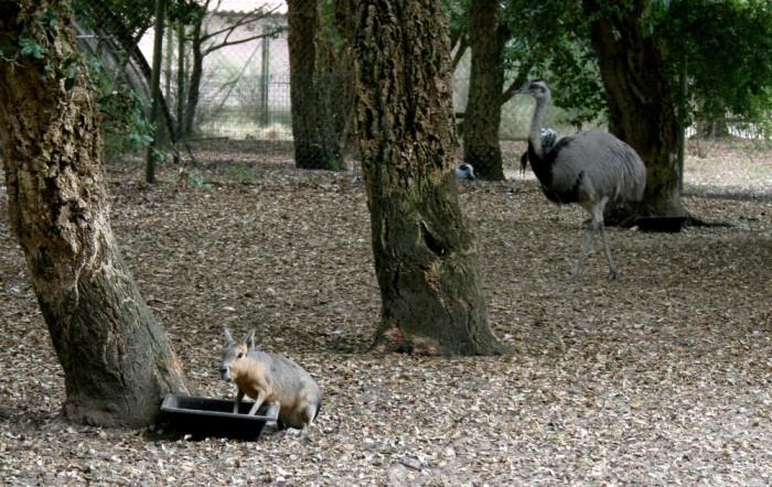 avis_zoo_labenne_aquitaine_01