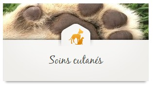 soins_propolia_animaux_chiens_chats_08
